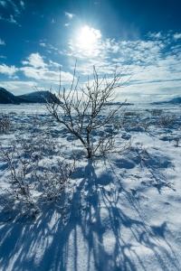 Vinterland Vesterålen –fotokurs ved storhavet. ©Bjørn Joachimsen.