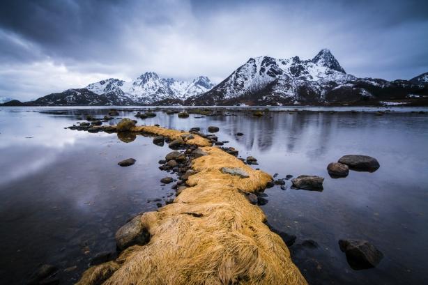 Fotokurs i Vesterålen –lær å bruke kameraet ditt og ta bedre bilder! ©Bjørn Joachimsen.