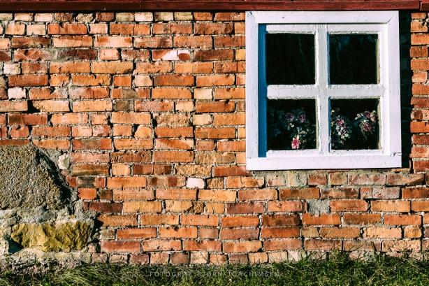 Fotokurs i Vestfold: Oppdag Veierland med kamera! ©Bjørn Joachimsen.