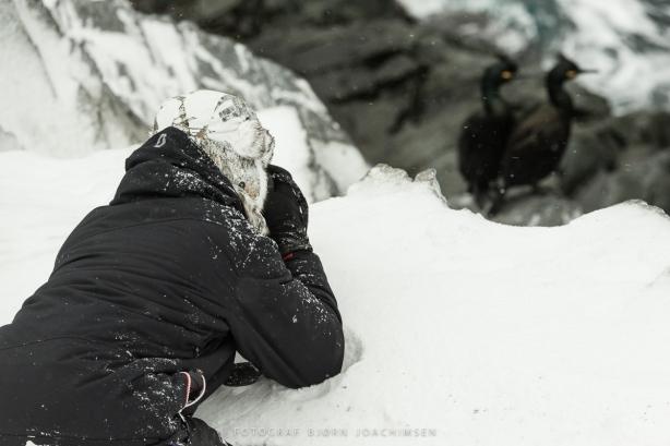 Fotoworkshop på Hornøya 2018. ©Bjørn Joachimsen.